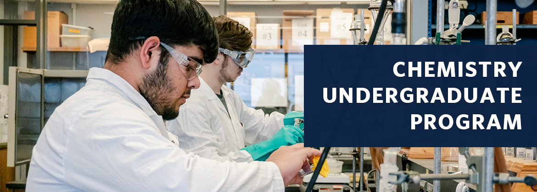 Chemistry Undergraduate Program