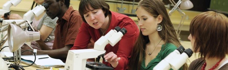 Prospective Undergraduate Students